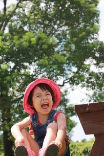 夏の公園での写真素材 [FYI00203156]