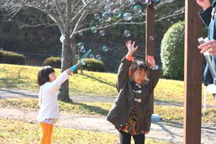 シャボン玉で遊ぶ子供の写真素材 [FYI00203173]