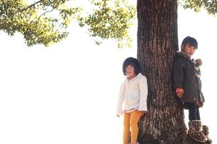 木によりそう女の子の写真素材 [FYI00203174]