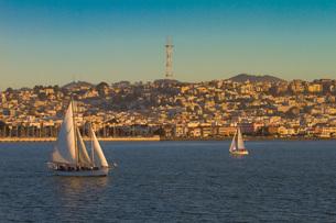 サンフランシスコ ヨットの写真素材 [FYI00203177]