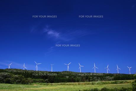 高原の風車群の素材 [FYI00203281]