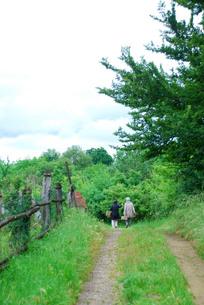 野山を散歩する女性の素材 [FYI00203434]