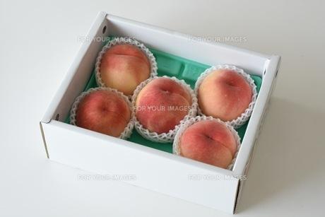 箱入りの桃の写真素材 [FYI00203586]