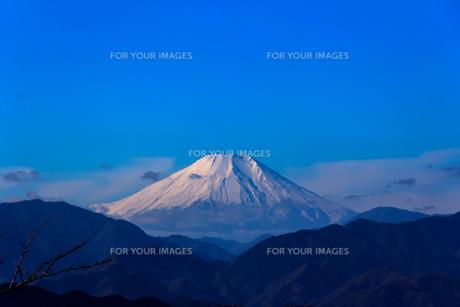 高尾山から富士山を遠望の写真素材 [FYI00203727]