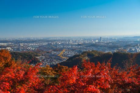 高尾山から東京一望の写真素材 [FYI00203735]