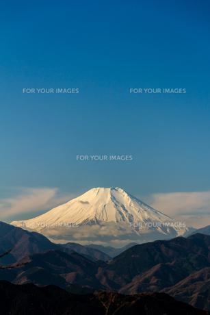 高尾山から富士山を遠望の写真素材 [FYI00203740]