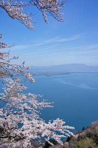 春の奥琵琶湖の写真素材 [FYI00203781]