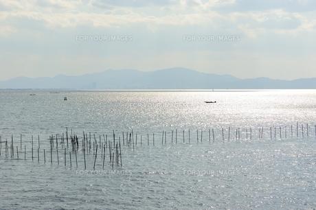 琵琶湖のエリ漁業の素材 [FYI00203807]