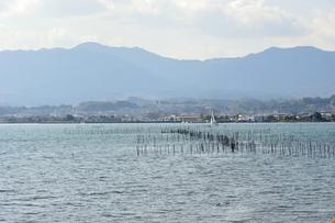 琵琶湖のエリ漁業の素材 [FYI00203808]