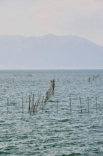 琵琶湖のエリ漁業の素材 [FYI00203819]