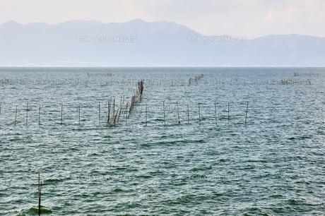 琵琶湖のエリ漁業の素材 [FYI00203836]