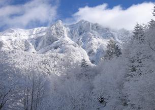八ヶ岳樹氷風景の写真素材 [FYI00203903]