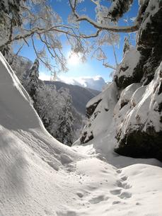 雪に埋もれた谷の写真素材 [FYI00203925]