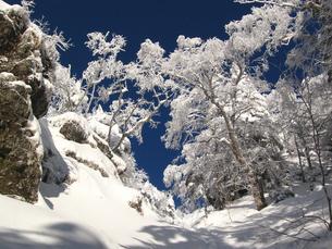 凍てつく山の写真素材 [FYI00203931]