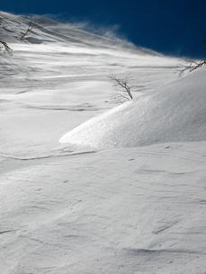 厳冬期雪原の写真素材 [FYI00203937]