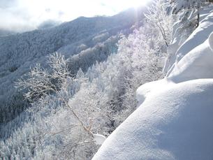 厳寒の八ヶ岳山中、逆光に輝く樹氷と積雪。の写真素材 [FYI00203961]