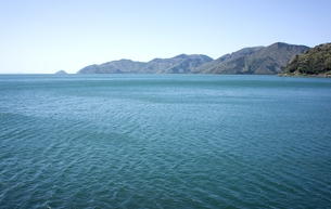 奥琵琶湖風景の写真素材 [FYI00203972]