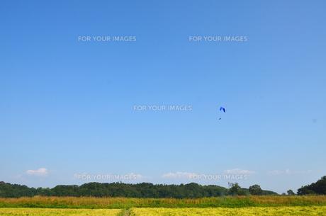 真っ青な空とパラグライダーの写真素材 [FYI00204030]