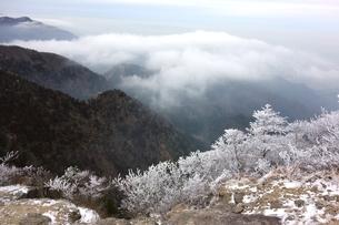 冬の御在所岳から三重県側の写真素材 [FYI00204135]