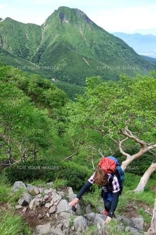 八ヶ岳クライミングの写真素材 [FYI00204177]