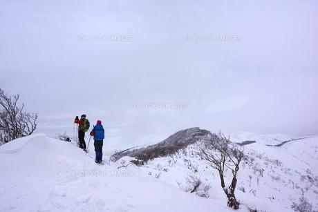 スノーシュー登山の素材 [FYI00204196]