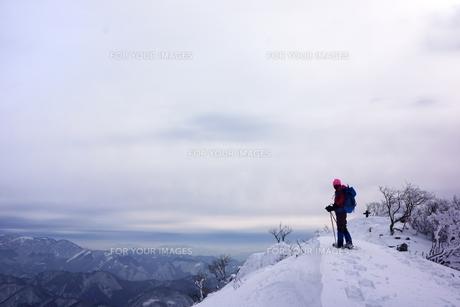 スノーシュー登山の素材 [FYI00204201]