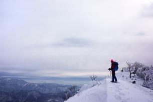 スノーシュー登山の写真素材 [FYI00204201]