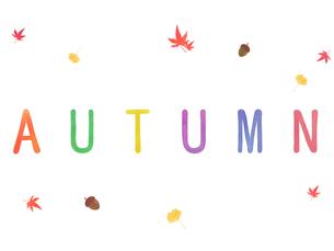 autumnの写真素材 [FYI00204643]