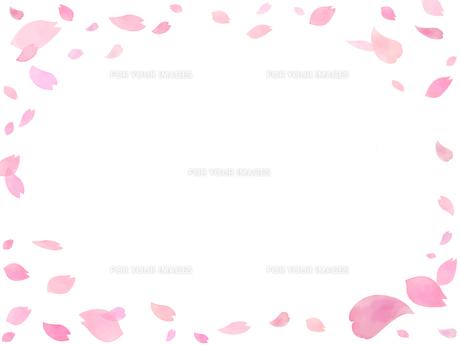 桜吹雪のフレームの写真素材 [FYI00204674]