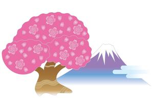 桜と富士山の写真素材 [FYI00205333]
