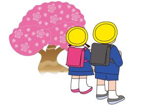 桜とランドセル姿の小学生の写真素材 [FYI00205360]