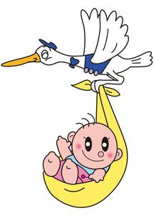 赤ちゃんを運ぶコウノトリの写真素材 [FYI00205372]