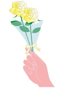 父の日の薔薇を差し出す手の写真素材 [FYI00205472]