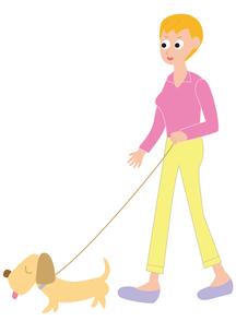 犬を連れて散歩をする女性の写真素材 [FYI00205486]
