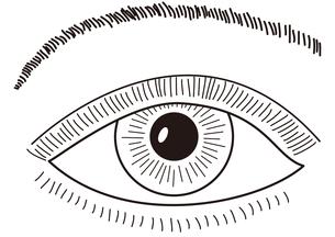 眼の写真素材 [FYI00205631]