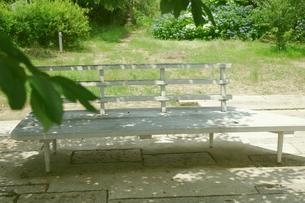 木陰のベンチの写真素材 [FYI00205770]