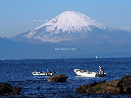 富士山の写真素材 [FYI00206135]