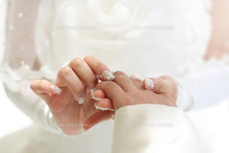 指輪交換の写真素材 [FYI00206182]