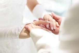 手を握り合う新郎新婦の写真素材 [FYI00206200]