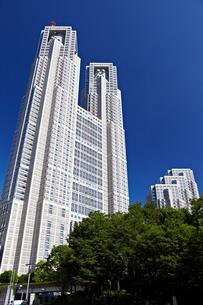 東京都庁第一本庁舎の写真素材 [FYI00206242]