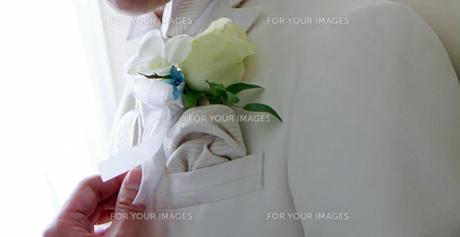 タキシードを着た新郎の写真素材 [FYI00206342]