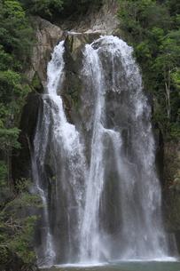 飛雪の滝の写真素材 [FYI00206561]