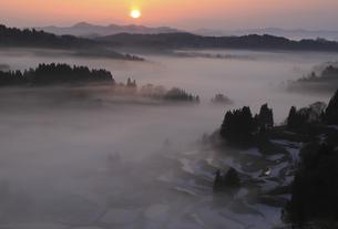 蒲生の夜明けの写真素材 [FYI00206596]