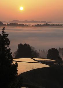 朝霧の棚田の写真素材 [FYI00206614]