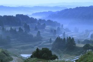 新潟県十日町市松代星峠の夜明けの写真素材 [FYI00206690]