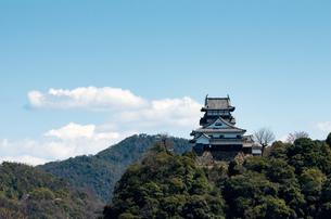 国宝・犬山城-005の写真素材 [FYI00206848]