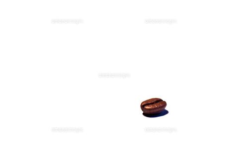 一粒のコーヒー豆の写真素材 [FYI00206985]
