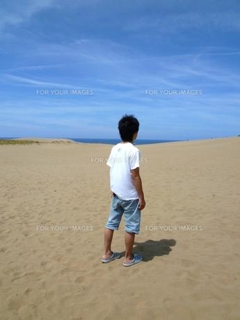 鳥取砂丘の写真素材 [FYI00206995]