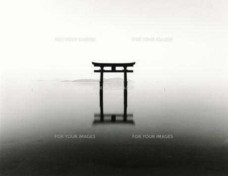 琵琶湖白髭神社の素材 [FYI00207021]
