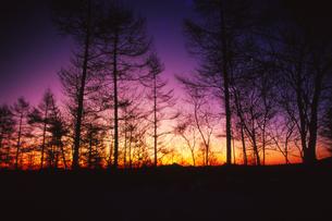 夜明けの写真素材 [FYI00207053]